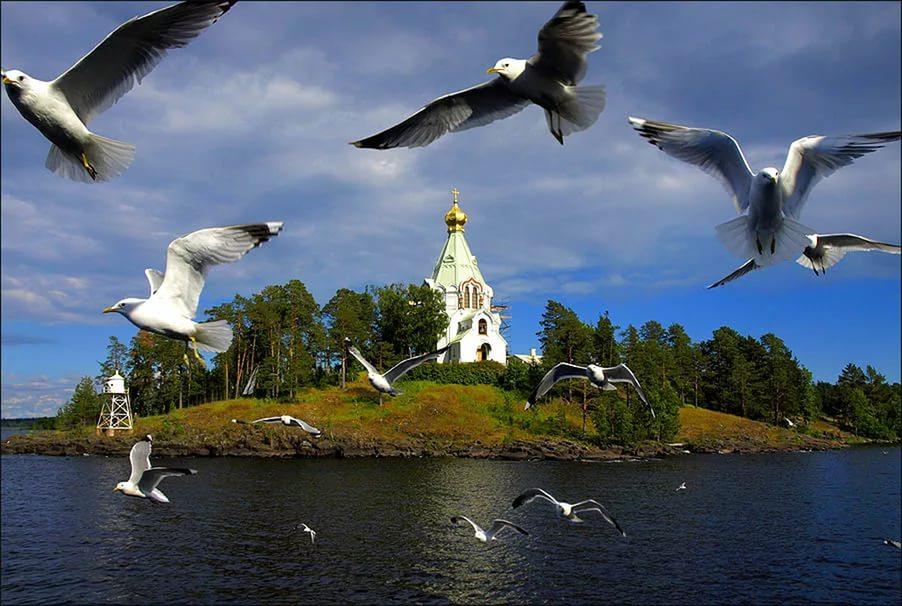 Санкт-Петербург – о.Валаам с 13 по 23 июля!